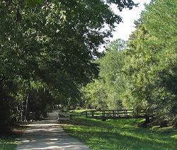Woodlands Path