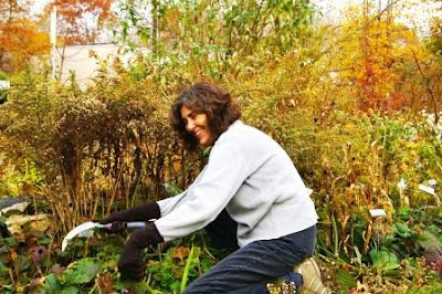 Gardening chopping plants with a hand sickle