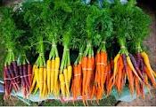 Warzywa w roli głównej