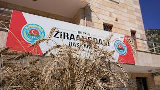 Bozkır'da Örnek Yerel Buğday türleri hasat edildi.