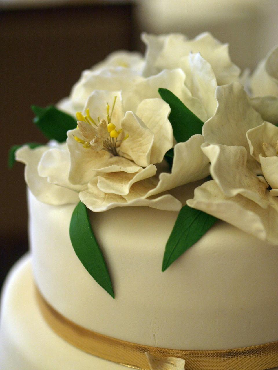 Tashi and Bobo: V&M Wedding - Wedding Cake