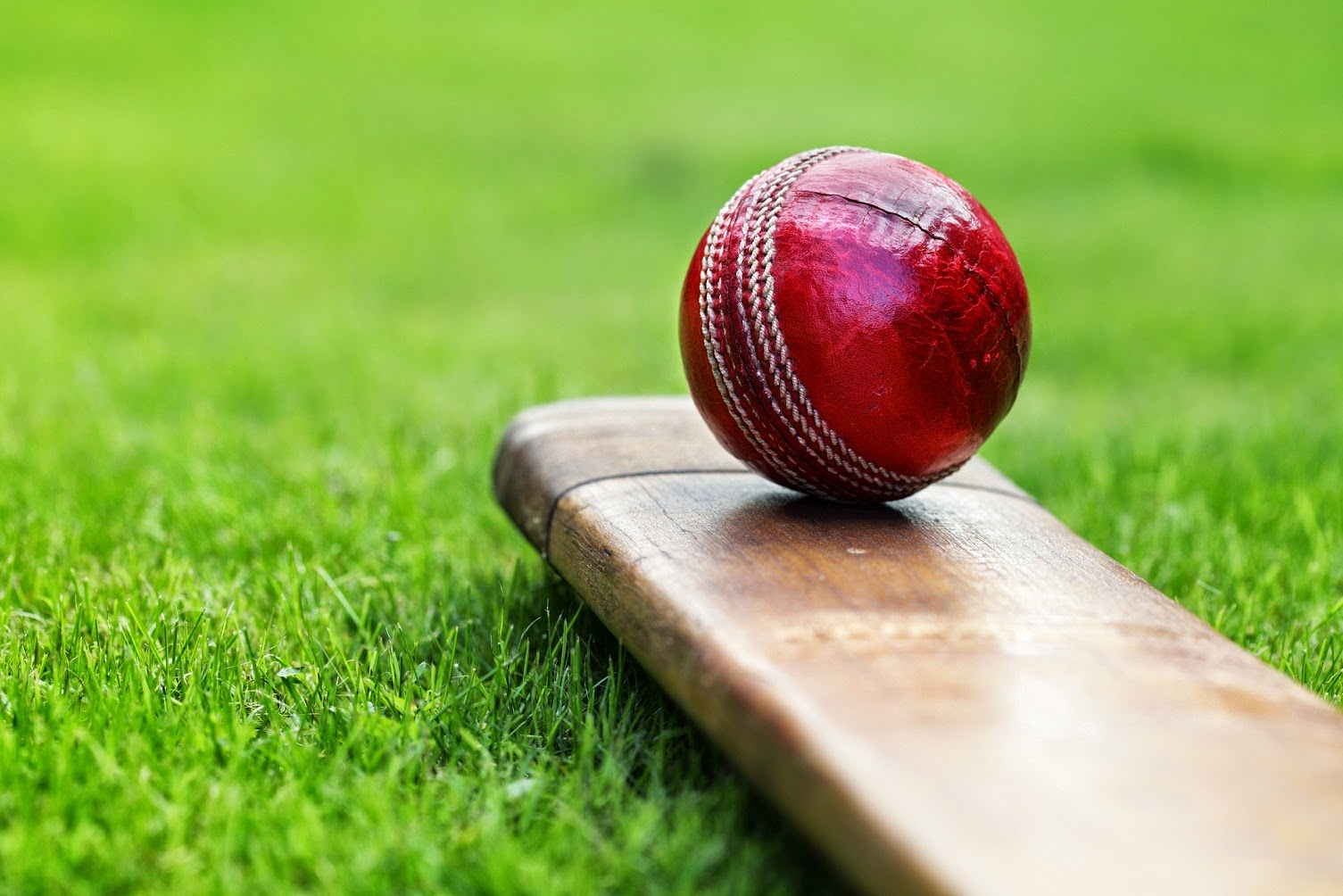 what is cricket