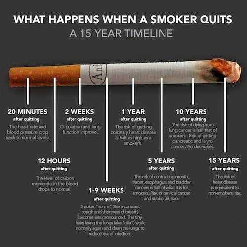 What They Don't Tell You: Fight Big Tobacco -- Quit Smoking!