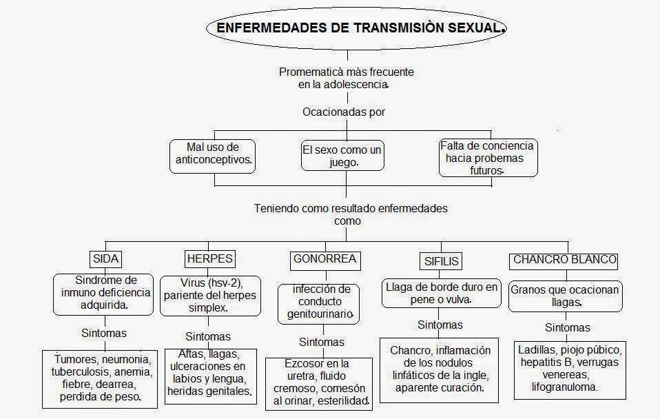 Bonito Diagrama Del Sistema Endocrino Etiquetado Modelo - Imágenes ...