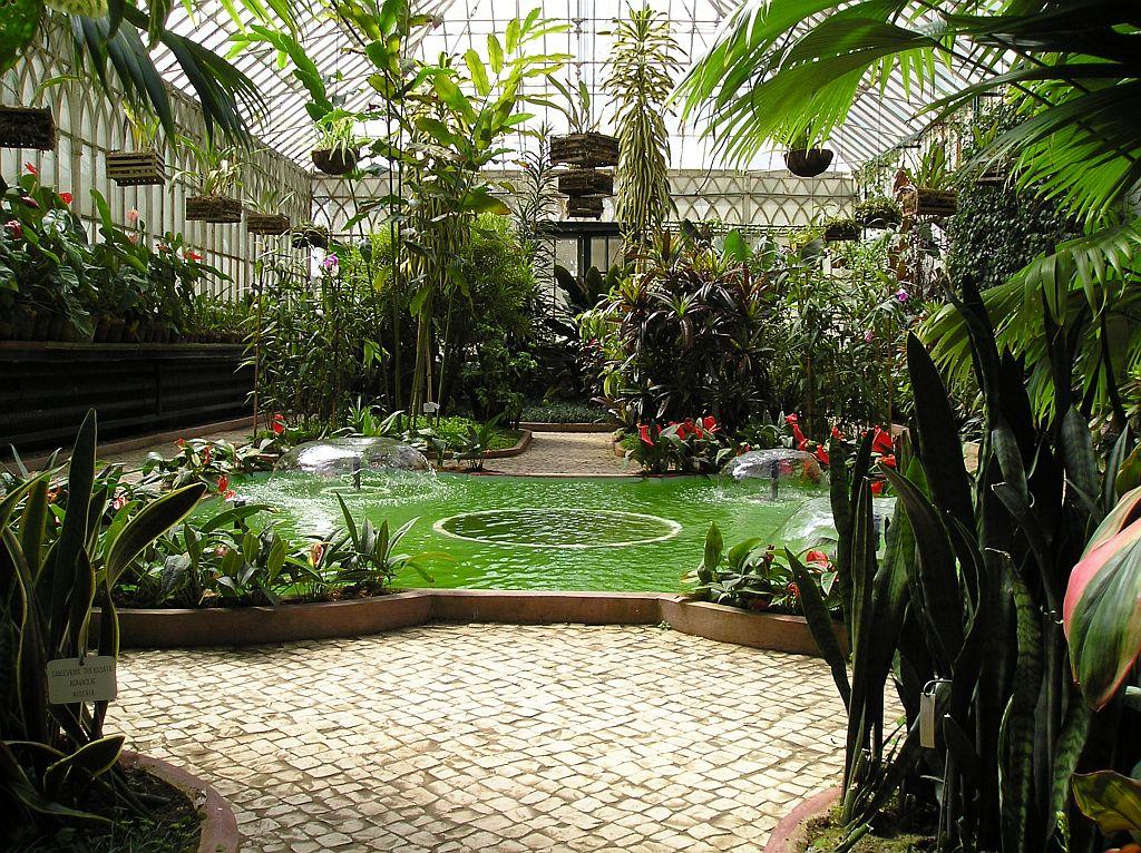 Jardins de agharta jardim bot nico da universidade de coimbra for Estufas de jardin