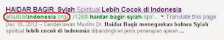 Haidar Bagir Syiah Cocok di Indonesia
