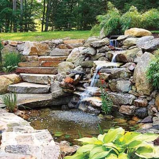 Natural backyard design ideas with pond exotic house for Outside fish pond ideas