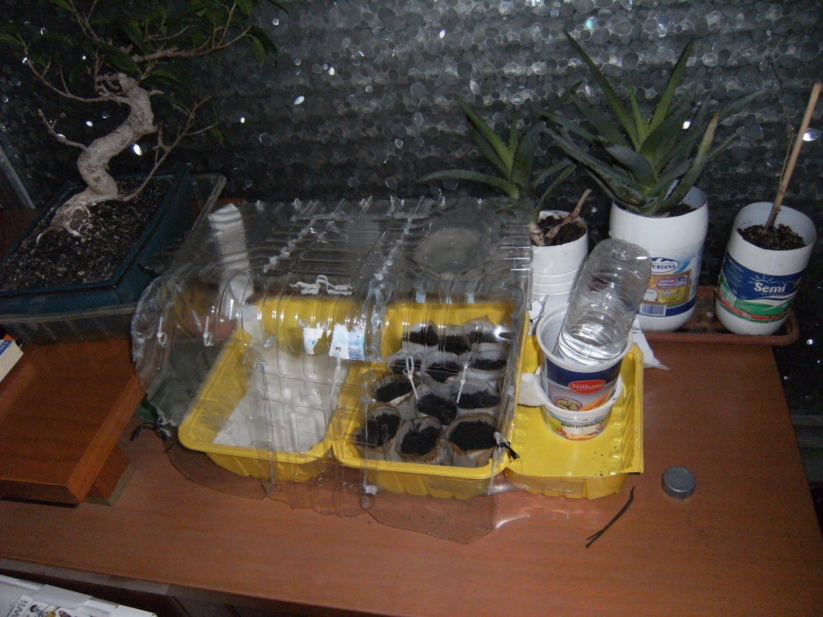 Fenec 39 s bol mini invernadero ecol gico casero - Mini invernadero casero ...