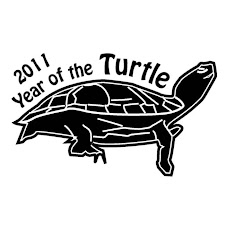 2011 Año de las Tortugas