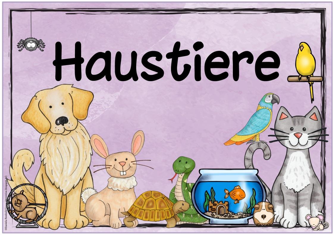 Groß Haustier Gesundheitsakte Vorlage Bilder - Entry Level Resume ...