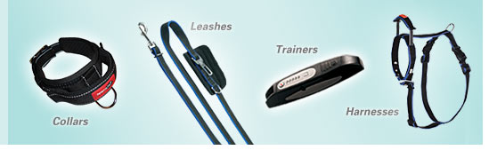 dog training leads and leashes