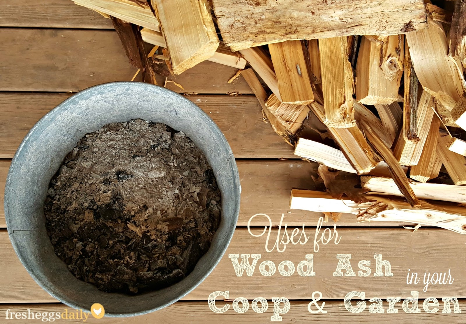 12 Great Uses For Wood Ash In Your Coop Home And Garden