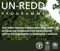 UN-REDD Programme