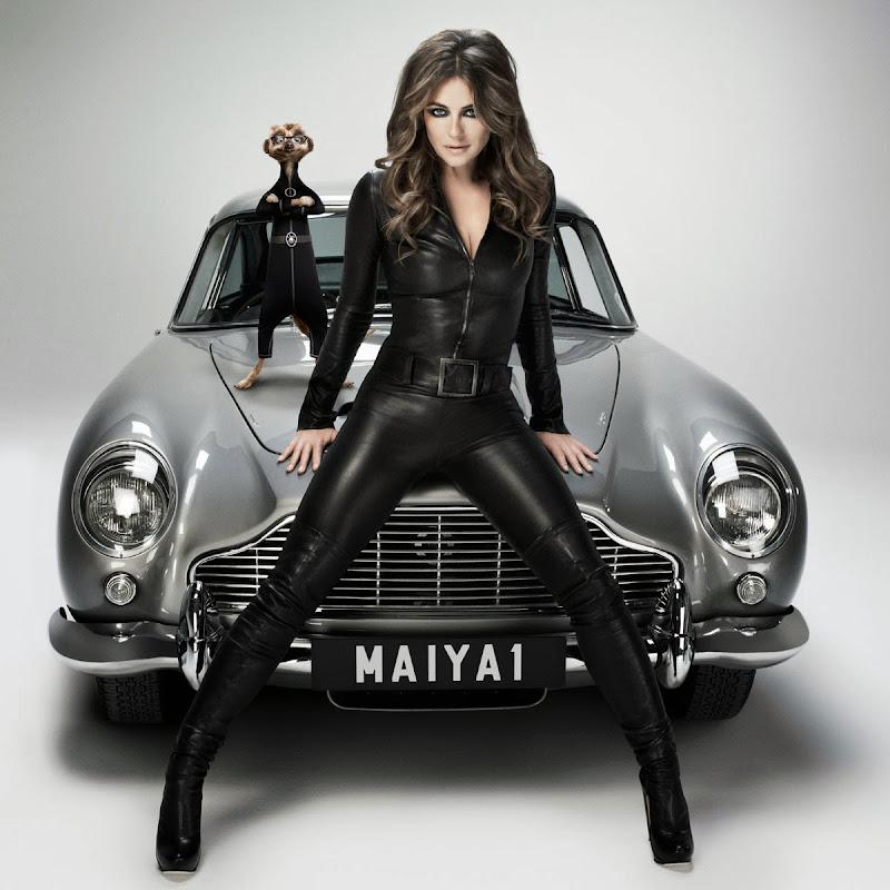Hurley Wallpaper: My Celebrity: Liz Hurley Leather Catsuit