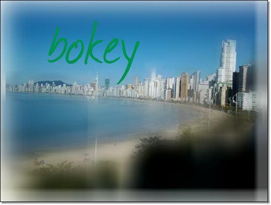 Balneario Camboriu Barra norte bokey