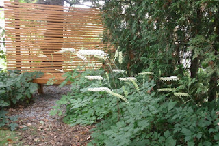 white pearl bugbane cedar zen bench and screen by Paul Jung Gardening Services Toronto