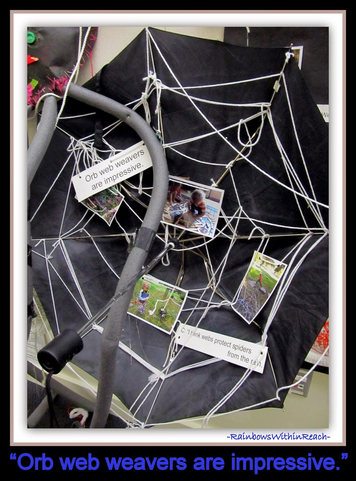 """""""Reggio Style"""" Documentation Approach in Early Childhood"""