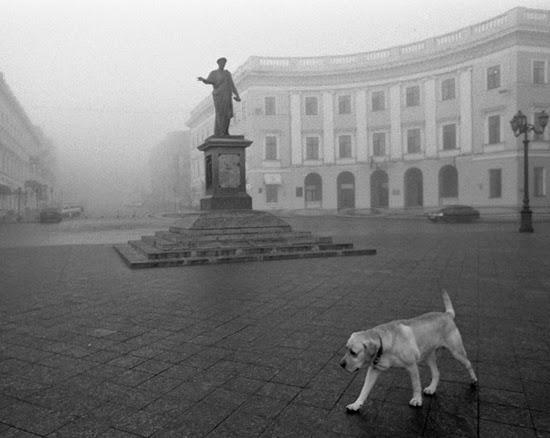 Фотограф Максим Яковчук: Киевская галерея ART 14 приглашает Вас на выставку фотографий Анны Голубовской «Преломление»
