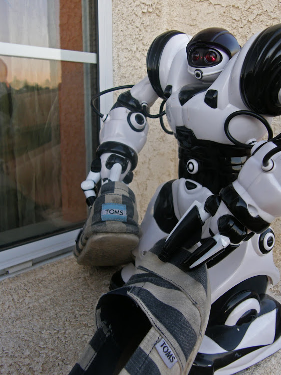 robot and toms