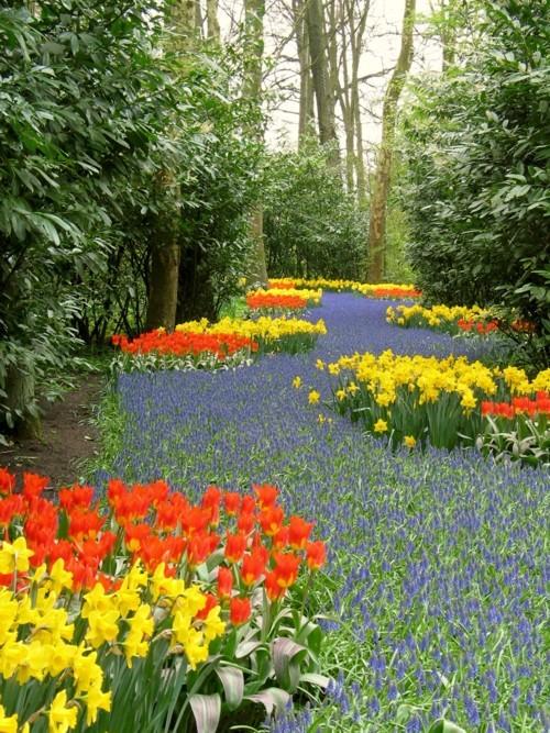 di dekat danau semuanya dikelilingi bunga bunga yang sangat cantik