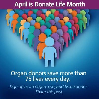 advantages of organ donation essay
