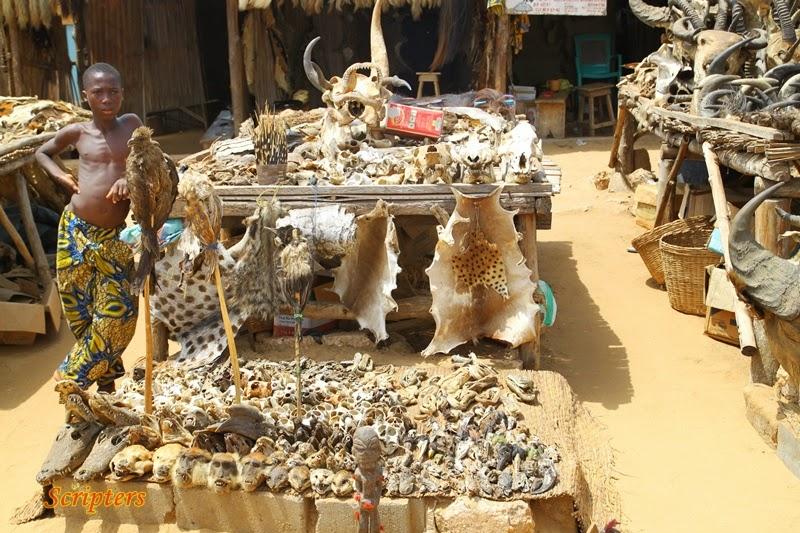 Pasar Menjual Barangan Ahli Sihir Di Togo, Ghana