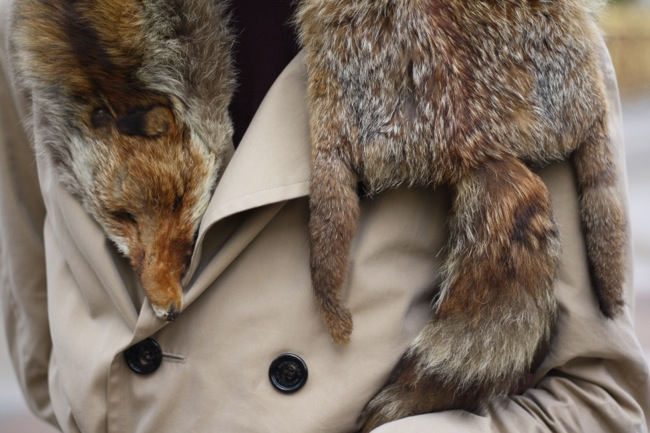 should we kill animals for fur I don't wear animal fur but i definently believe people in cold climates need it i  if  people kill animals for food why does it matter that those people are killing.