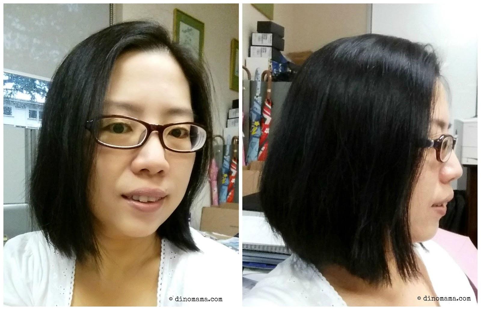 Liese Blaun Treatment Cream Color Best Diy Hair Dye For Gray