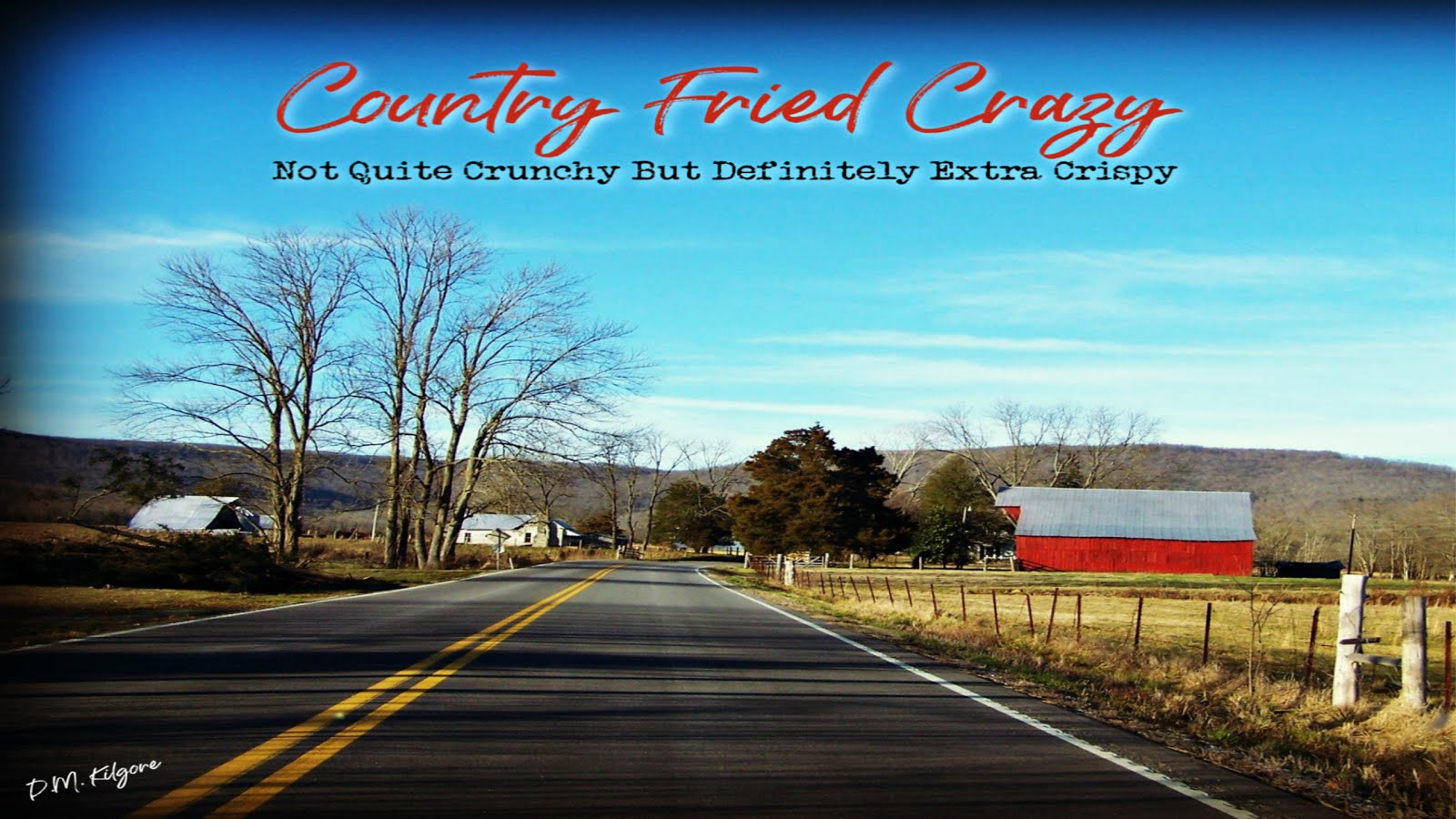 Official Blog: Country Fried Crazy