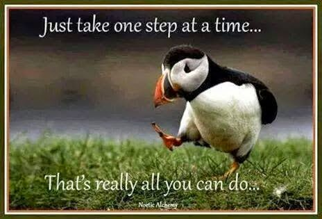 """Just take one step at a time... That's really all you can do..."" Picture of a cute bird taking a step."