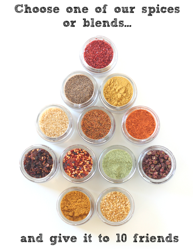 Stocking Stuffer Spice Kit giveaway on SeasonWithSpice.com