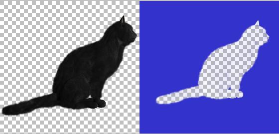 Exemplo Gato preto e seu recorte