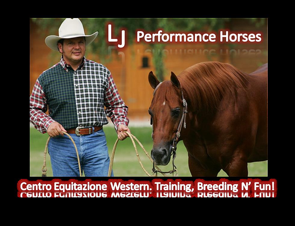 LJ Performance Horses