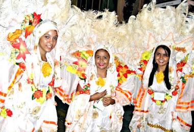 Foliãs da Vilage no Samba