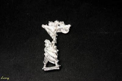 Vista dorsal del Esqueleto portaestandarte