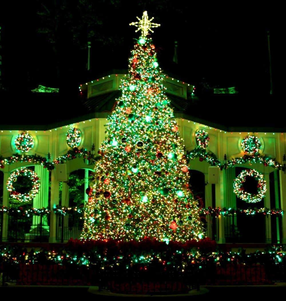 Main Street Christmas Tree