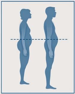 perimetro abdominal