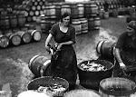 Packing herring - 1940's