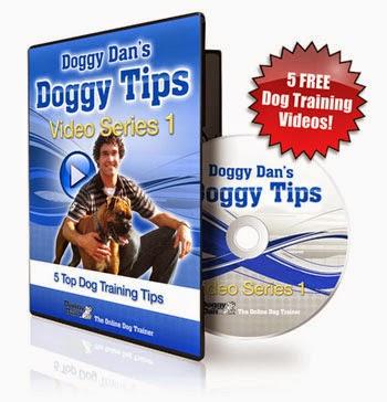 Free Dog Videos