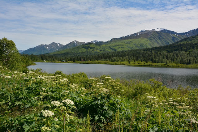 Lake Sterling Highway Alaska