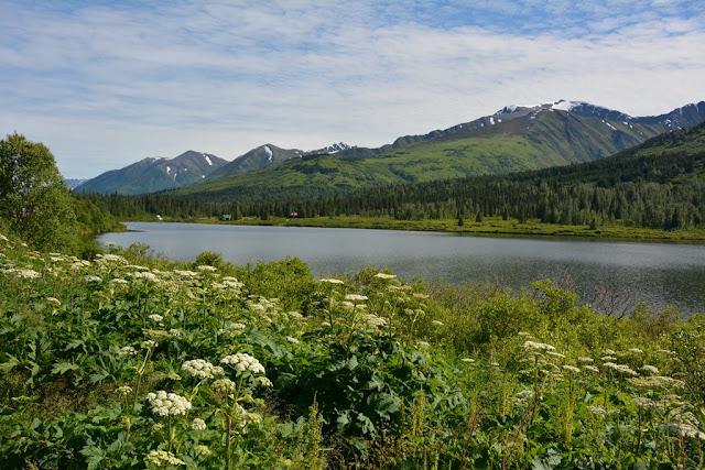 Lake Sterling Highway Alaska