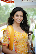 Rakul Preeth Singh at Pandaga Chesko Launch-thumbnail-10