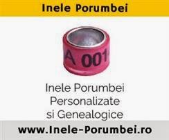 http://www.inele-porumbei.ro