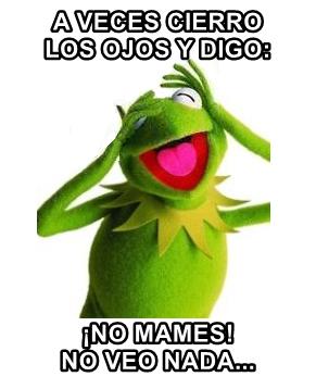 rana rene memes memes de la rana rene memefrases