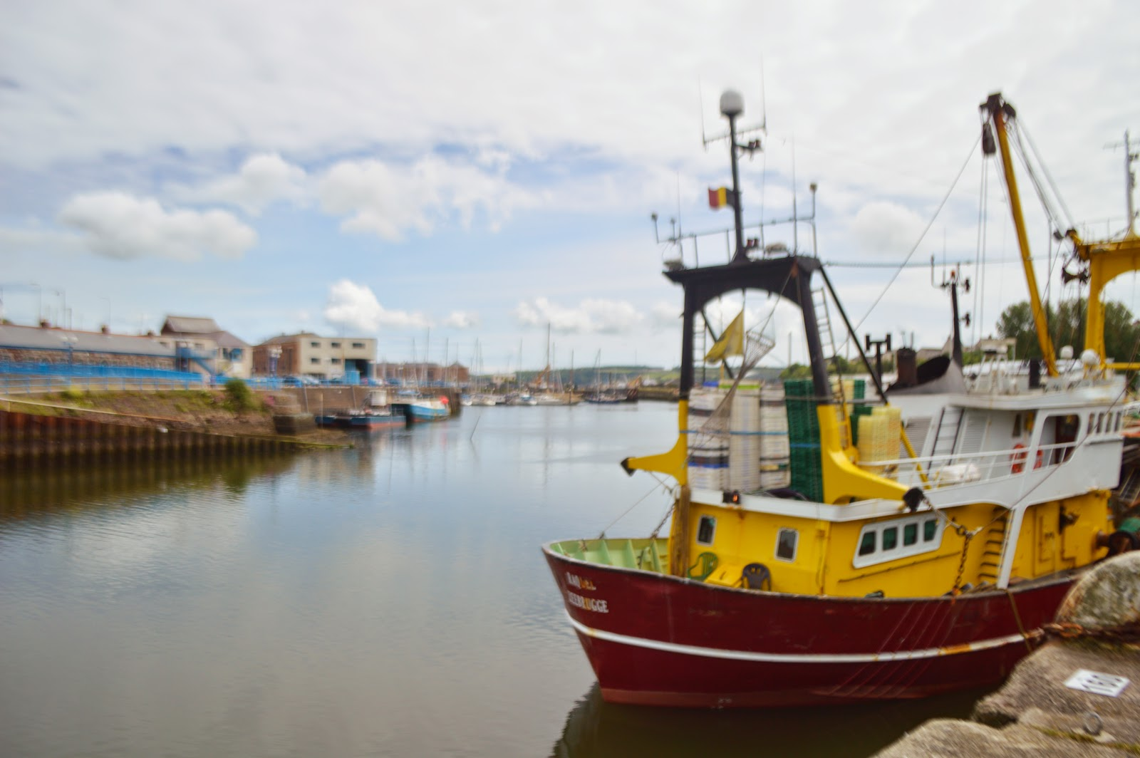 Milford Marina Pembrokeshire