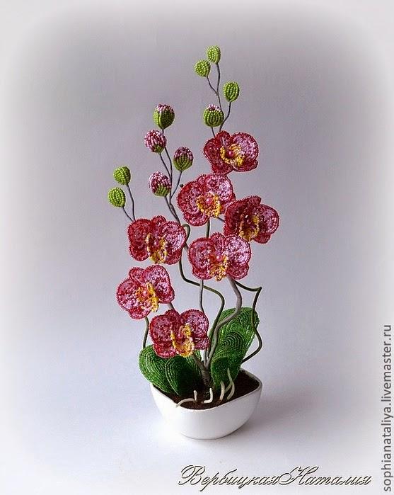 Note 4 фото цветов