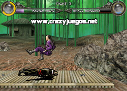 Jugar Dragon Fist 3D gratis - www.crazyjuegos.net
