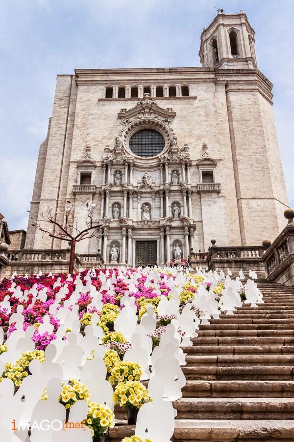 Catedral de Girona, Temps de Flors, 2014
