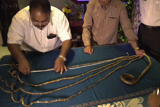 The man who has not cut his finger nails since 1952,the man with the world's longest finger nails,Shridhar Chillal with the longest finger nails in the world