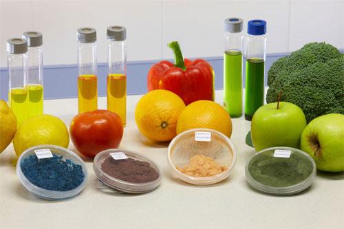 Alimentacion bio eared autobio productos ecol gicos de - Productos de limpieza caseros ...